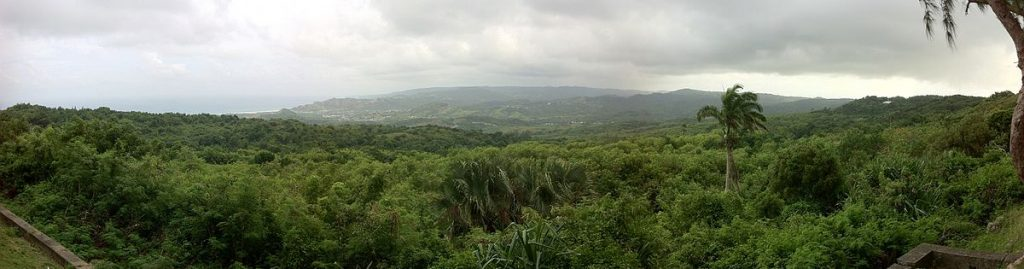Farley Hill: View over the east coast of Barbados