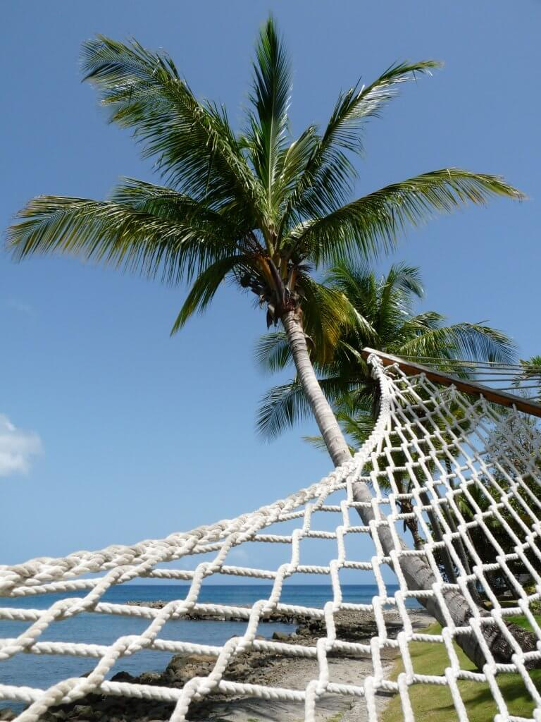 a hammock tied to a palm tree on the beach st lucia
