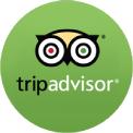 advisor-icon
